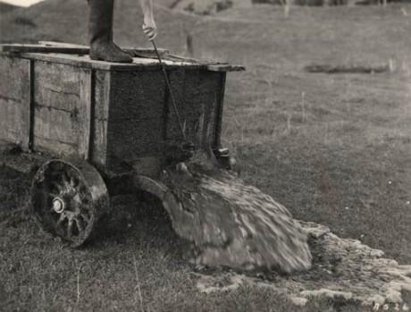 Ten národ ještě nezhynul, pokud mu věštec zpívá! FOTO archiv