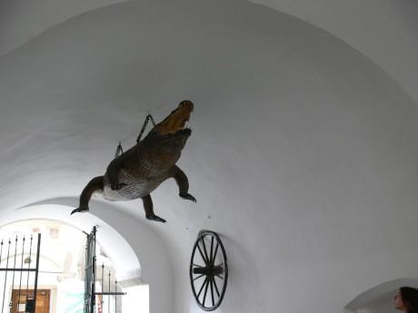 Podle pověsti měl bájný brněnský drak žít u řeky Svratky a terorizovat Brňany. Trápení je zbavil až řeznický učeň, který drakovi předhodil volskou kůži naplněnou vápnem. Když ji zvíře snědlo, napilo se vody a puklo. FOTO archiv