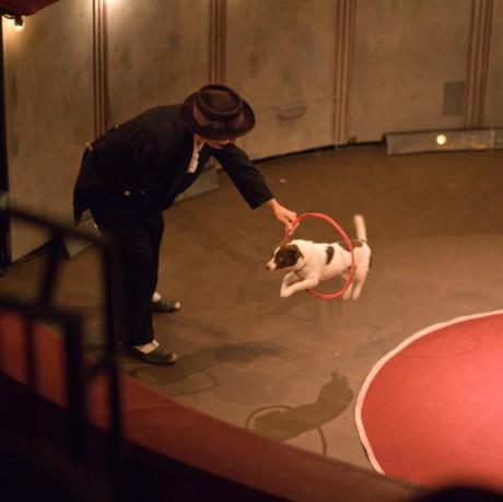 dokonce i číslo s psíkem se objevilo... FOTO archiv