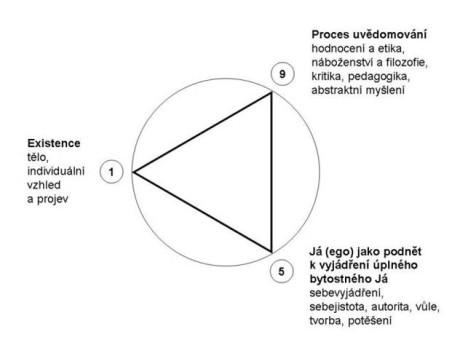 Trojúhelník neříká, že by tento vývojový proces probíhal pouze jedním směrem, naznačuje spíše vzájemnou závislost všech tří vrcholů, které se navzájem doplňují. Význam je zhruba následující: pátý a devátý dům nemohou fungovat bez fyzického těla (ascendent); bez snahy být sám sebou nemůže člověk vyrůst ve skutečnou individualitu (z knihy Psychologická astrologie Karen Hamaker-Zondagové). Repro archiv
