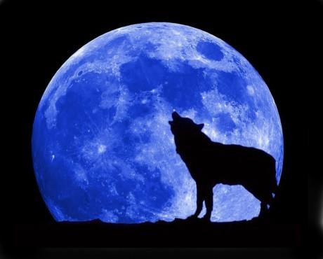 Měsíc byl kulatý. FOTO archiv