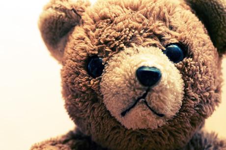 Vzal jsem vedle sedícího medvídka, pozvedl jsem ho, ale nezamával. FOTO archiv
