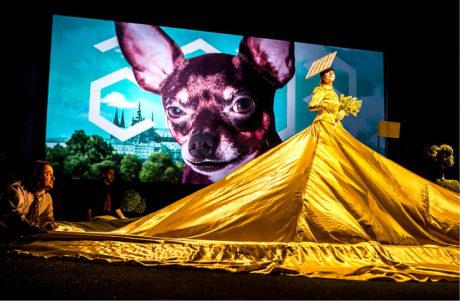 Snímek z inscenace Po sametu (premiéra 17. listopadu 2014 na Nové scéně Národního divadla) FOTO JAKUB FULÍN