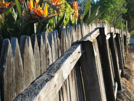 Jiný podivuhodný podivín si postavil plot. FOTO GREG O'BEIEME